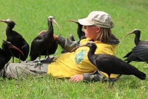 Foster parent Daniela Trobe with the ibis