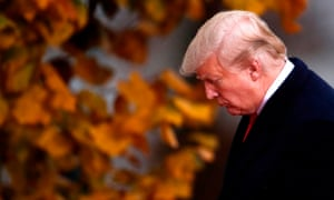 Trump in shot with some leaves.