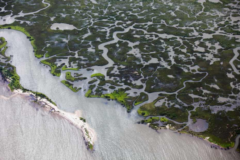 Aerial view of Louisiana's marshlands threatened by the BP oil leak in the Gulf of Mexico. Migratory birds pass through the wetlands and much of America's seafood comes from the region.