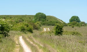The chalk downland of Martin Down national nature reserve.