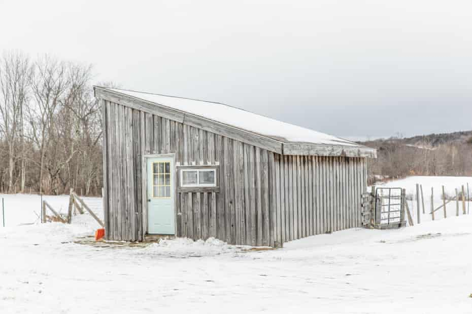 The Wales farm property that is now the Little Jubba farms came with several structures. The goat shed now houses 12 goats.