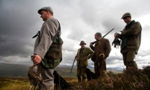 Grouse shooting Dalnamein on the Blair Atholl estate, Scotland, UK.