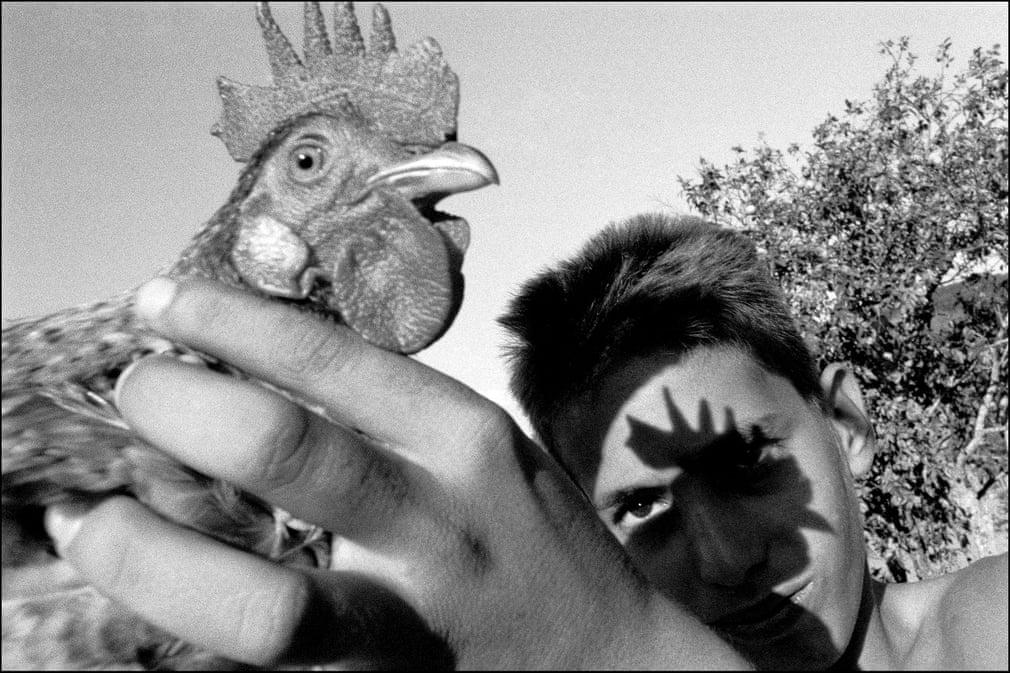 VINALES. Sein Projekt Tierra Guajira ist eine Hommage an die kubanischen Landwirte mit einem fast anthropologischen Ansatz, der es ihm ermöglicht, seine eigene Kindheit im Osten des Landes nachzuzeichnen | Bildquelle: The Guardian | Bilder sind in der Regel urheberrechtlich geschützt