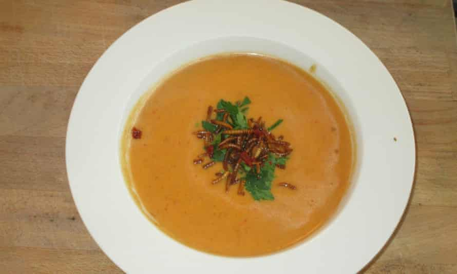 Sam's successful butternut and mealworm soup.