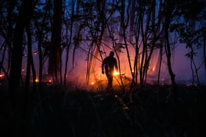 A forest fire blazes in Ziltendorf close to the border with Poland.