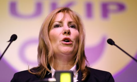 MEP Janice Atkinson: decried post-referendum grief emails as 'snowflake nonsense'.