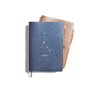 Zodiac Journal, £16, anthropologie.com