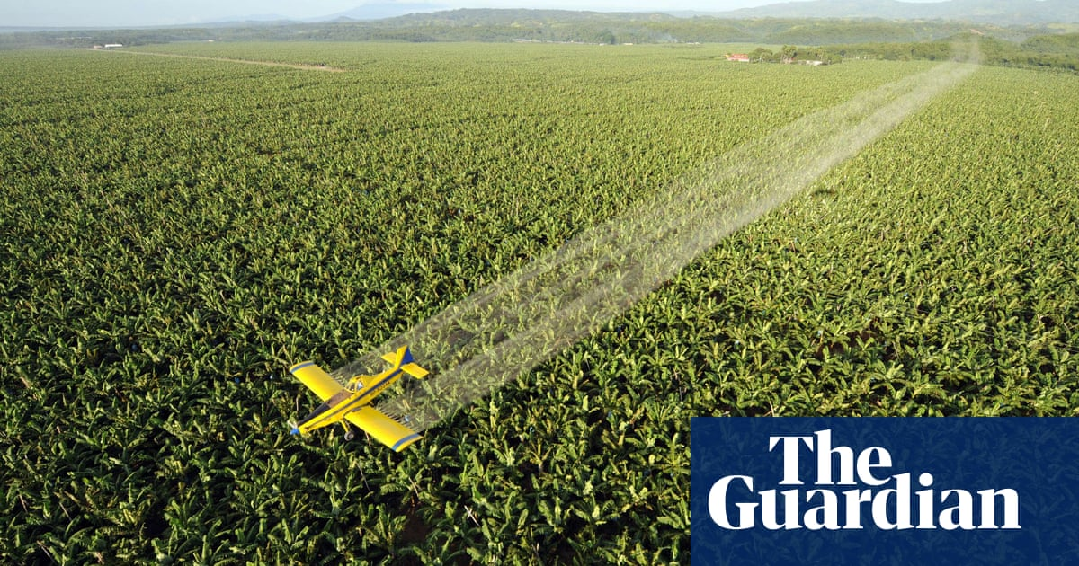 Brazilian politician's cunning plan to fight Covid: spray hand gel from planes