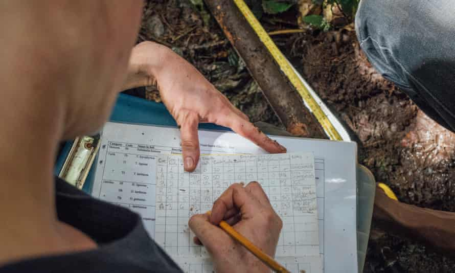 Researchers have been gathering data in the area since 2012.