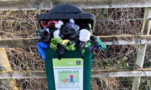 overflowing dog poo bin in Greenham Common, Newbury