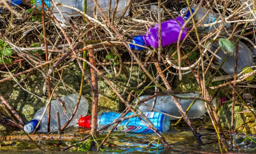 Discarded plastic bottles pollute the banks of a river
