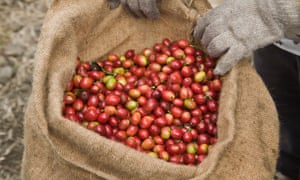 High street chains seek to attract more customers as the price of coffee beans, wages and rents rise.