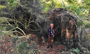 David Jacques at Blick Mead ... the tunnel would threaten the Mesolithic site that tells 'the backstory to Stonehenge'