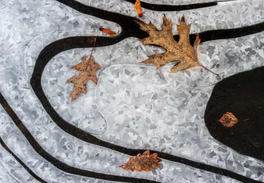 Autumn leaves on a frozen lake in in Peitz, Germany. New research has found the tipping point that plunges Earth into deep freezes.