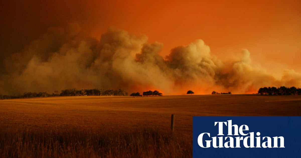 Thinning forests doesn't reduce bushfire risk and could make some blazes worse study finds – The Guardian