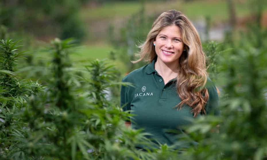 Alexandra Chong on Jacana's cannabis farm in Jamaica