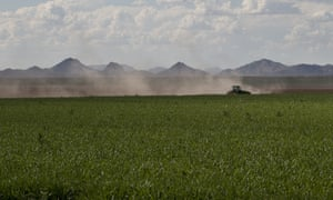 A farm in Arizona. US agricultural exports are worth about $140bn a year.