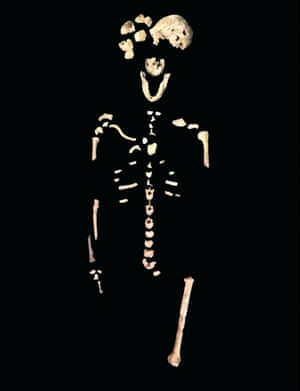 "The ""Neo"" skeleton. Homo naledi stood about 150cm tall fully grown and weighed about 45kg."