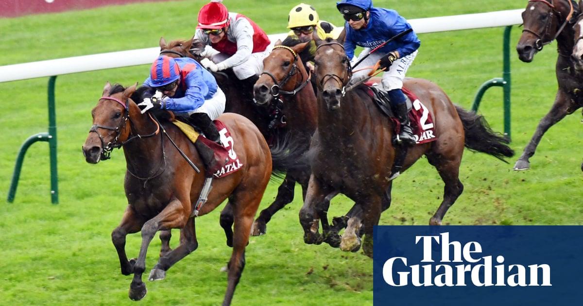 Talking Horses: Dubai Honour can upset favourites on Champions Day