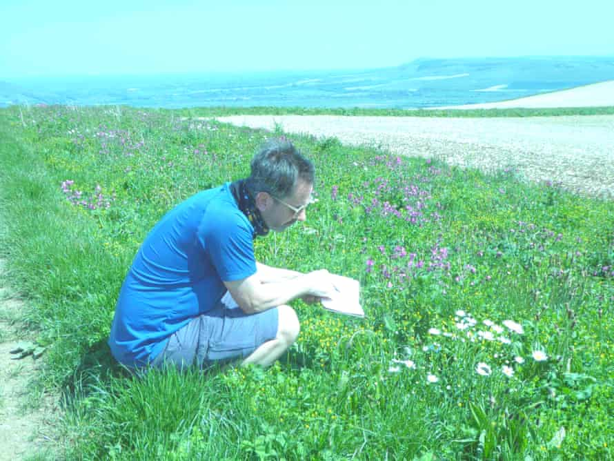 Dixe Wills on the South Downs