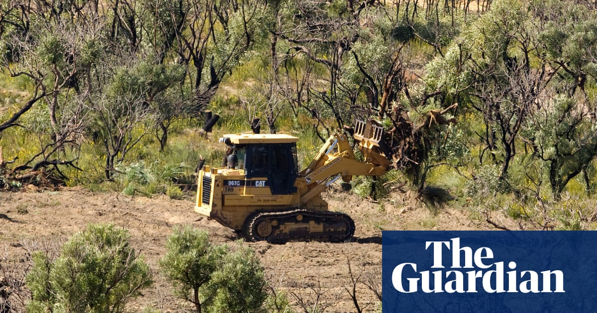 5abe29226b9 Clearing of native vegetation in NSW jumps 800% in three years ...