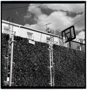 Backyard backboards