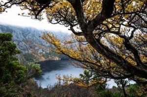 Turning fagus trees surround Crater Lake at Cradle Mountain national park in Tasmania