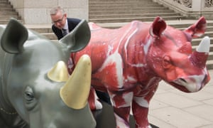 Red rhino: 'And I thought I looked ridiculous'.