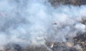 A firefighting helicopter above the endangered trees