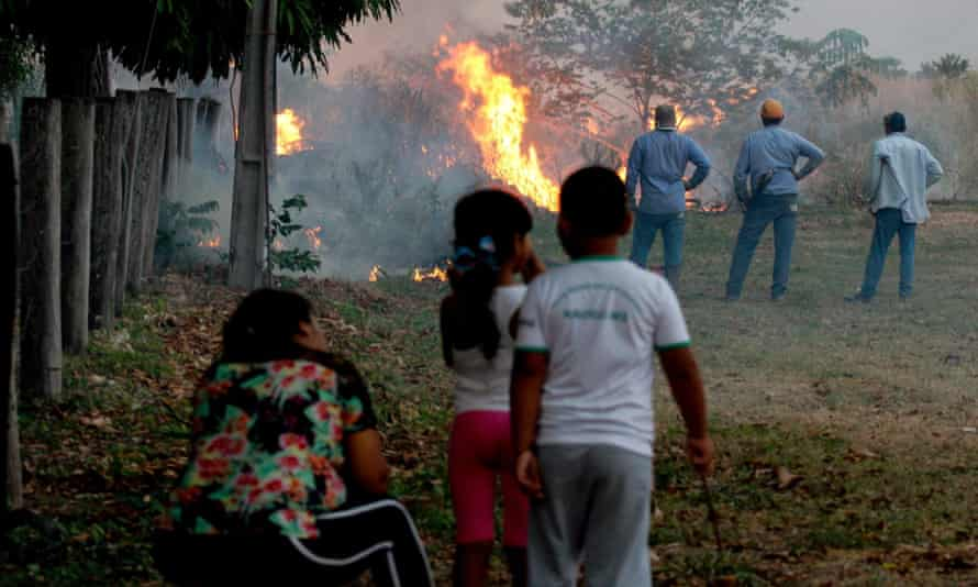 People watching a section of forest burning in the Amazon, Brazil
