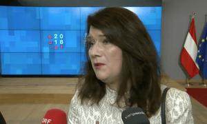 Ann Linde, Swedish Europe minister
