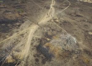 Scorched landscape near Nacaome, southern Honduras
