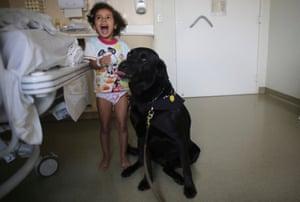 """""""Les chiens ont un effet magique"""": comment les animaux peuvent améliorer notre santé mentale Compagnie"""