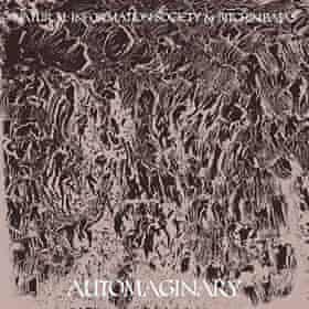 autoimaginary cover