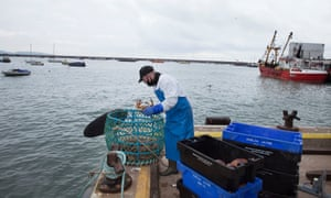 Mark Harvey, at Brixham Fish Market in south Devon, sorts crabs to be kept fresh in the sea until transportation to London.