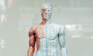 Figure showing acupuncture meridians in a Chinese herbal medicine shop window, London.