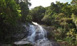 A waterfall in Parque Nacional da Tijuca.