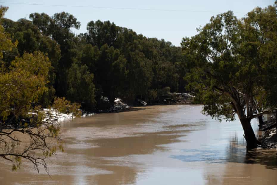 The Darling River at Louth.