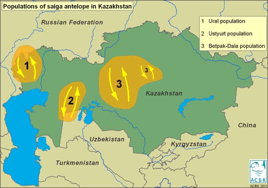 Saiga distribution map.