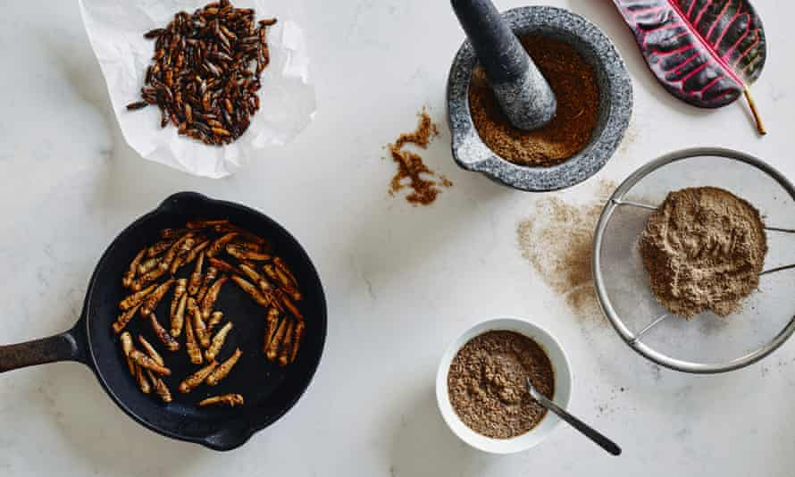 An image from Eat Grub: The Ultimate Insect Cookbook.