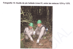 One of the photos of the footprints found during seismic exploration in the proposed Yavari-Tapiche reserve. This photo and caption appears in CEDIA's study done under contract to the Culture Ministry.