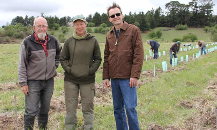 A potential natural burial site near Armidale