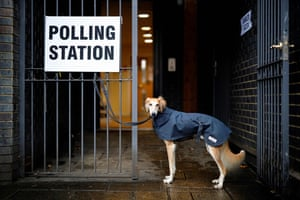 A dog in a raincoat, waits for its owner to return outside a polling station in north London