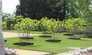 Twelve figs planted in front of the church at Saint-Cosme Priory represent the Apostles.