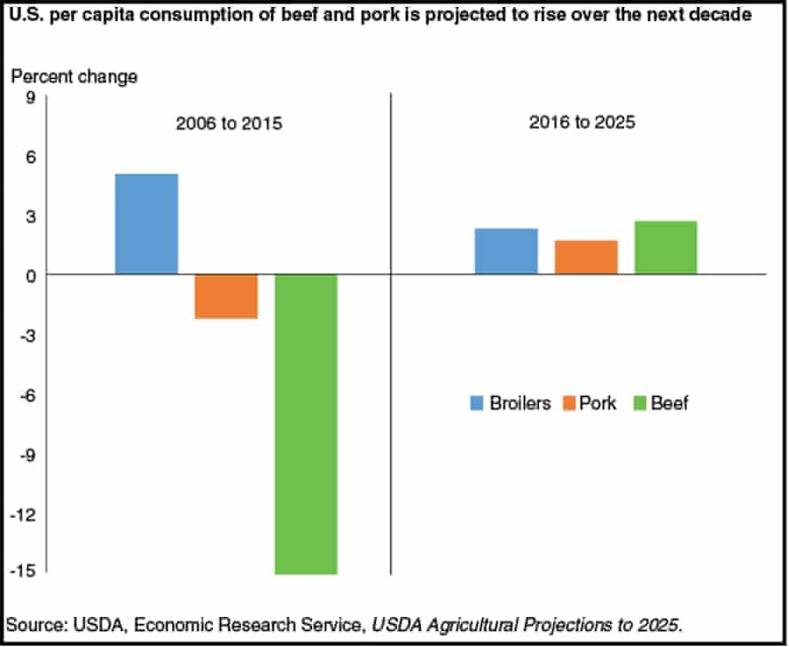 US per capita meat consumption projection