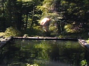 The Reflecting Pool, 1977-9 by Bill Viola.