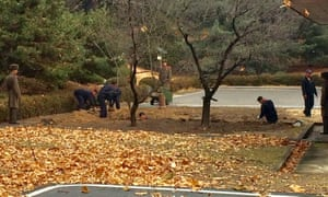 North Korean soldiers dig a trench and plant trees in the area where a defector ran across the border at the Demilitarized Zone (DMZ).