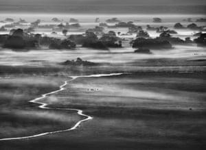 Kafue National Park, Zambia. 2010