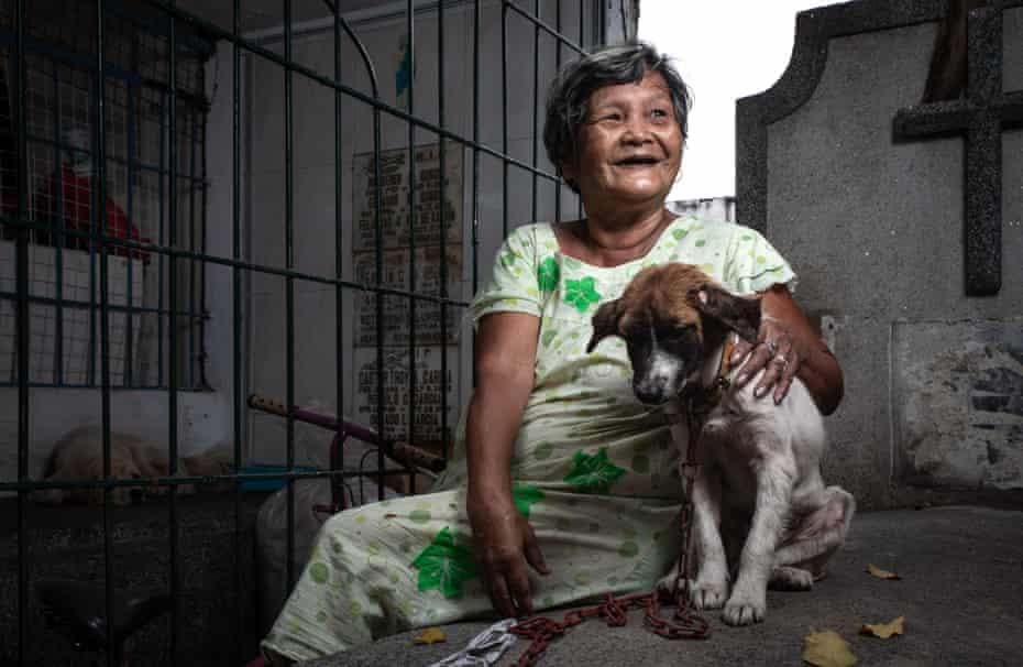 زنی با توله سگ در قبرستان.