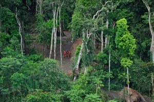 Uncontacted tribespeople in the Javari Valley, pictured in 2011